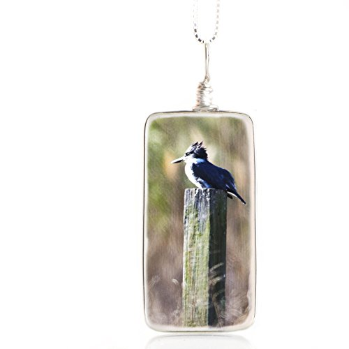 handmade-glass-bird-necklace-original-kingfisher-image-fused-to-artisan-made-pendant-on-italian-ster