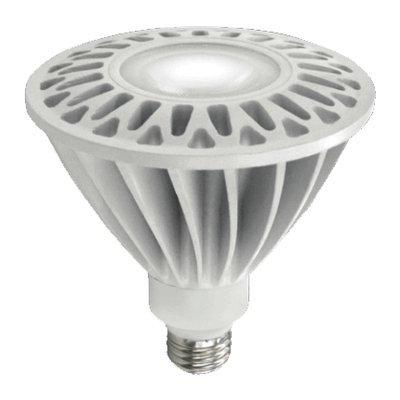 Ace White Halogen Floodlight Bulb Floodlight 60 watts Medium E26 1070 lumens PAR38