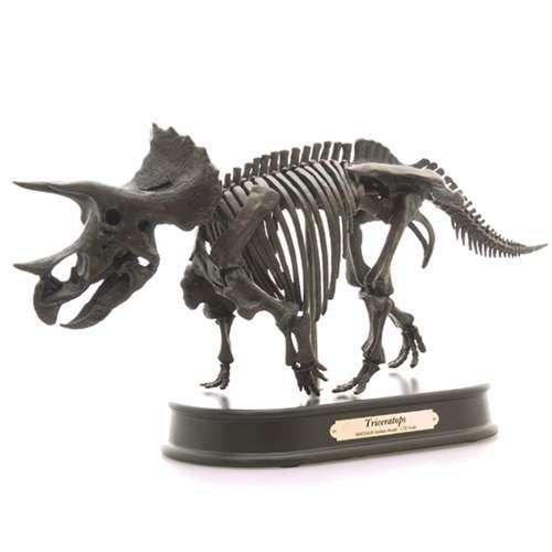 恐竜グッズ(骨格フィギュア)トリケラトプス 最高峰 スケルトンモデル