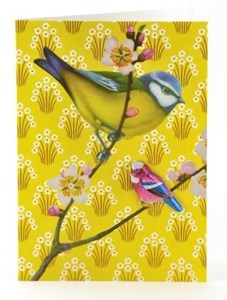 Petra Boase Tin Badge Card - Blue Tit With Yellow Sprigs front-634181