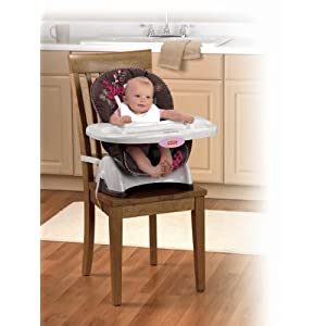 fisher price mocha butterfly booster seat high chair