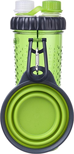 dexas-popware-for-pets-h-duo-dual-chambered-hydration-bottle-with-collapsible-pet-cup-green