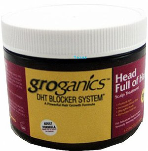 Groganic DHT Head Full Of Hair Treatment 175 ml