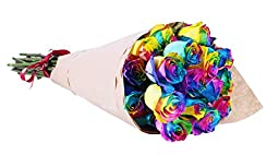 24 Long Stem Rainbow Multicolor Tinted Roses