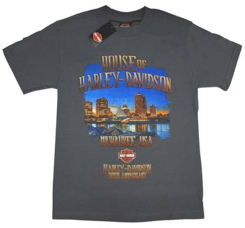 Harley-Davidson Men's Limited Edition 110th Skyline Grey T-Shirt Tee. 30296260