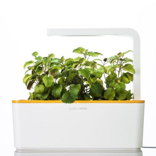 Smart-Herb-Garden