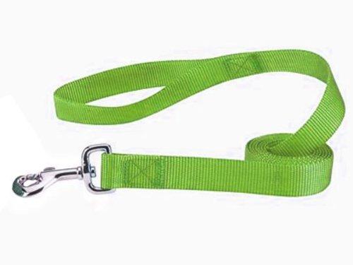 Zack & Zoey Nylon Dog Lead, 6-Feet, Parrot Green