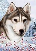 Siberian Husky Grey by Tamara Burnett Winter Berries Garden Dog Breed Flag 12'' x 18