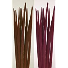 Green Floral Crafts Thick Palm Stalks 4' Tall x1.5in. W- Bunch of 10