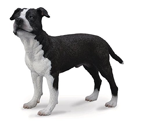 CollectA American Staffordshire Terrier - 1