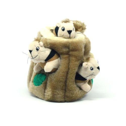 Kyjen PP01056 Hide-A-Squirrel Pet Toy, Large