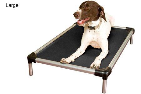 Indestructible Dog Beds Webnuggetz Com