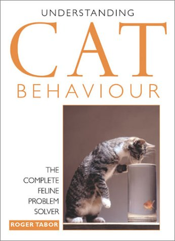 Understanding Cat Behavior