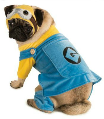 Large - Cat & Dog Costume Minion Large