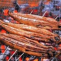 SHUEI  国産 特大うなぎ蒲焼 1本(約160g)+たれ・山椒セット