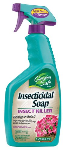 Garden Safe Insecticidal Soap Insect Killer 24 oz Ready To Use Spray 10424X