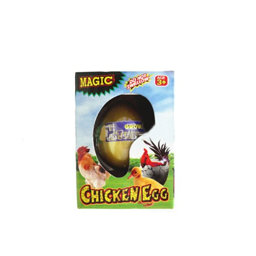 Growing Chicken Egg - 1