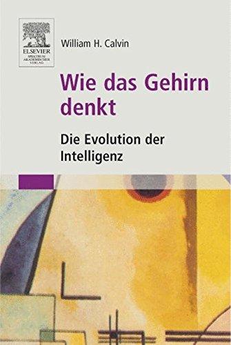 Wie das Gehirn denkt: Die Evolution der Intelligenz