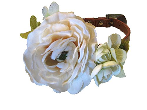 Wedding Flower Dog Collar- Rustic Ivory (Medium 12.5