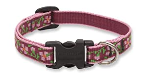 Lupine 1/2-Inch Cherry Blossom 6-9-Inch Adjustable Dog Collar for Small Dogs
