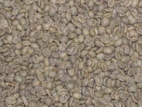 Costa Rica Cafe Vida Green Coffee Beans - 10Lbs