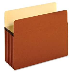Globe-Weis File Pockets, 5.25-Inch Expansion, Letter Size, Brown, 10 Pockets per Pack (63234GW)