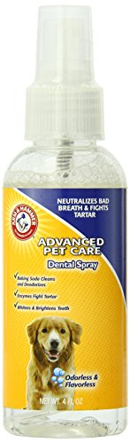 Arm and Hammer Advanced Care Dental Spray for Dogs, No Odor/Taste (Camellia Sinesis Extract compare prices)