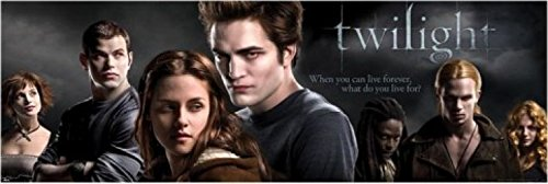 1art1-43807-twilight-what-do-you-live-for-i-tur-poster-158-x-53-cm