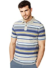 XXXL North Coast Pure Cotton Multi-Striped Polo Shirt