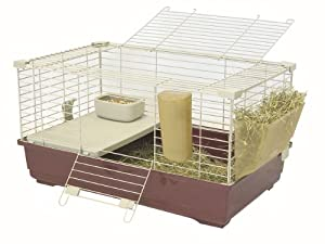 Marchioro Tommy C 72 Cage for Small Animals, 28.25 inches, Wine/Beige