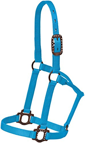 Antique Steel Dot Halter - Horse Size, Many Colors (Aqua)