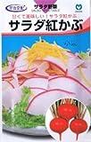 【種子】かぶ サラダ紅かぶ 1.8ml