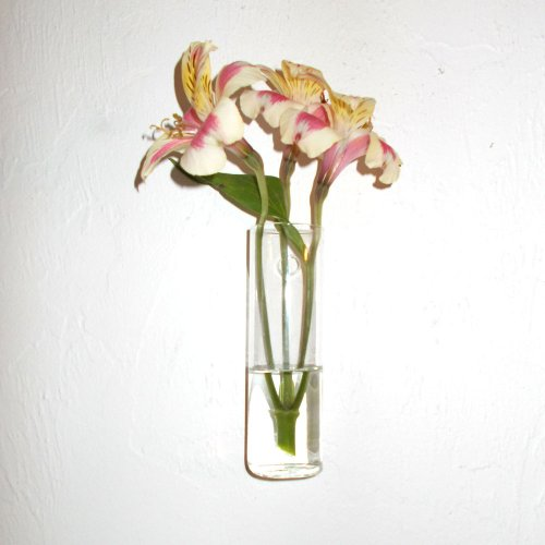 411C2Gv5blL Hand Blown Glass Wall Vase