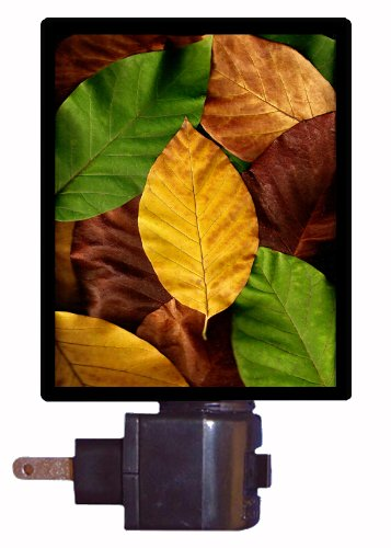 Floral / Flower Night Light - Fall Leaves - Autumn LED NIGHT LIGHT
