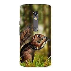 Impressive Squirrel Multicolor Back Case Cover for Moto X Play