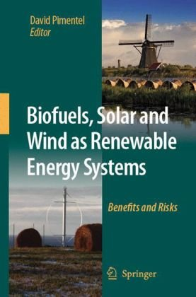 Biofuels, Solar and Wind as Renewable Energy Systems: Benefits and Risks