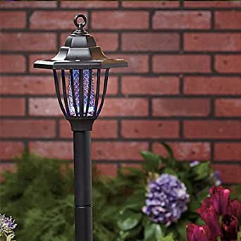 Solar patio lights amazon
