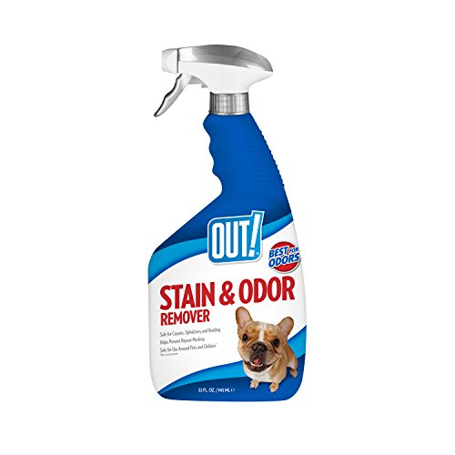 OUT! Pet Stain & Odor Remover, 32 oz (Enzyme Stain Remover compare prices)