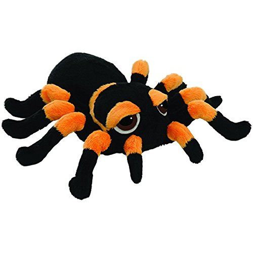 lil-peepers-14277-tarantula-spinne-medium
