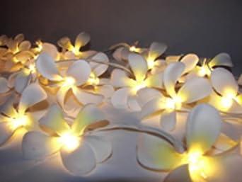 White Frangipani Flower Fairy Lights