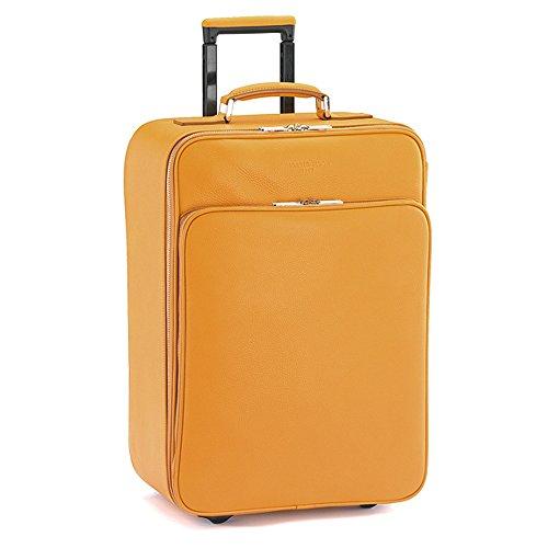 Giorgio-Fedon-1919-Travel-Trolley-Suitcase-On-Flight-Luggage