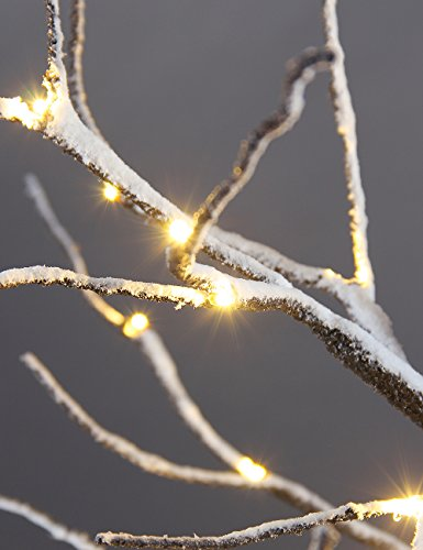 ... Light, Home/Festival/Party/Christmas,Indoor and Outdoor Use,Warm White