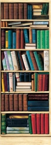 Bibliotheque Library Huge Wall Mural Door Poster Print - 36x100