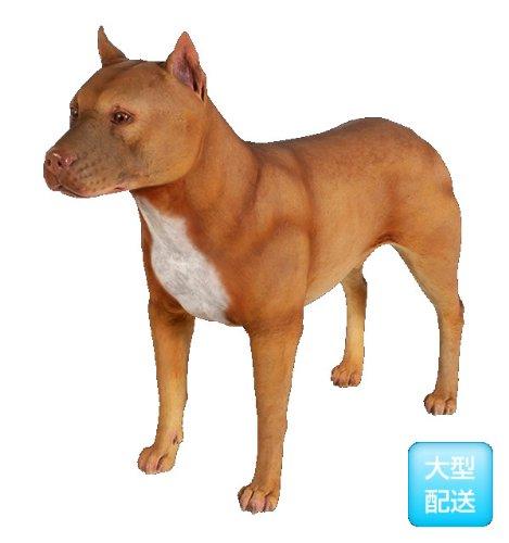 FRPアニマルオブジェ ピットブル 犬