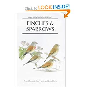 finches and sparrows an identification guide