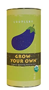 Grow Your Own Eggplant