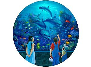 Dolphin Encounter Jigsaw Puzzle 500pc - 1