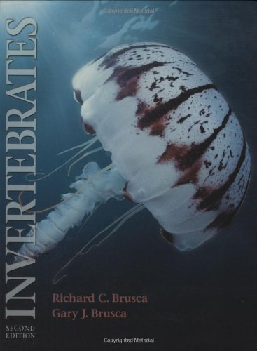 Invertebrates - Second Edition [Hardcover]