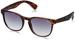 Killer Wayfarer Sunglasses (Demi) (KL3028BFO Demi 50)