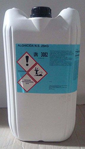 antialghe-non-schiumogeno-per-pulizia-acqua-piscina-alghicida-kg-10
